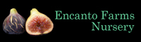 Encanto Farms Nursery