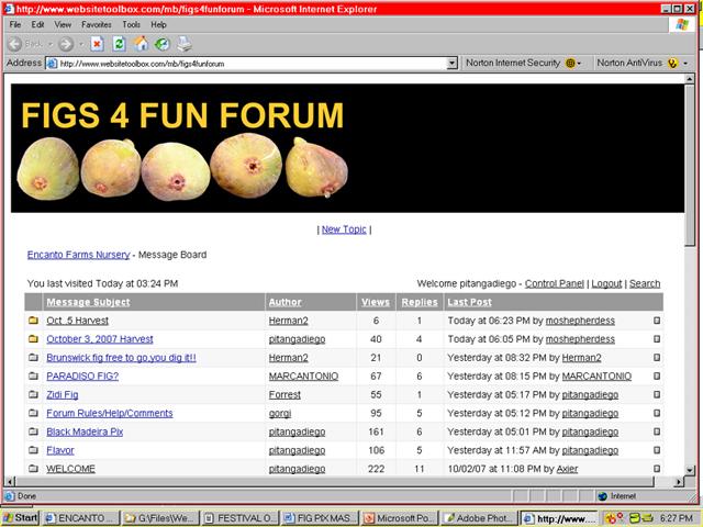 Figs 4 Fun Forum